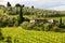 Stock Image : Summer rural landscape