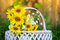 Stock Image : Sunflowers in basket