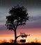 Stock Image : Sunset Swing