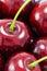 Stock Image : Sweet red cherries