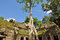 Stock Image : Ta Prohm temple