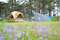 Stock Image : The tent on camping site