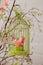 Stock Image : Textile bird in birdcage