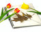 Stock Image : Three tulips and notebook