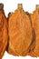 Stock Image : Tobacco leaf
