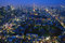 Stock Image : Tokyo at Dawn