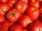Stock Image : Tomato