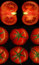 Stock Image : Tomatoes collage