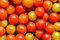 Stock Image : Tomatoes