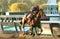 Stock Image : Tonalist Wins the Million-Dollar Jockey Club Gold Cup