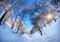 Stock Image : Tourist in winter birchwood