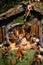 Stock Image : Traditional christmas crib