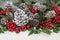 Stock Image : Traditional Christmas Flora