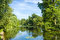 Stock Image : Tranquil Pond Framed by Lush Green Woodland Park