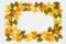 Stock Image : Tri Color Bow Tie Pasta Border on White Background