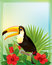 Stock Image : Tropical background with toucan