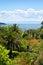Stock Image : Tropical Landscape