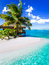 Stock Image : Tropical villa and palm tree next to blue lagoon