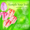 Stock Image : Tulip flowers on green