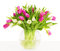 Stock Image : Tulips flowers bouquet in vase, white background