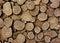 Stock Image : Turffles texture