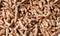 Stock Image : The Turmeric