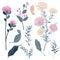Stock Image :  Uppsättningar av det blom- hälsningkortet för sommar med blommande söta blommor