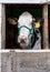 Stock Image :  Vaca que habla en un granero