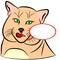 Stock Image : Domestic Cat