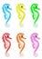 Stock Image :  Verschillende kleur Seahorses