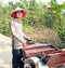 Stock Image :  Vietnamese Riksjabestuurder