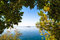 Stock Image : Views through the forest on a calm sea and with a clear blue sky