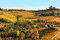Stock Image : Vineyards on the hills in autumn in Italy.