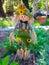 Stock Image :  Vogelverschrikker