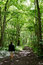Stock Image : Walking woman in forest