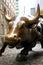 Stock Image : Wall Street Bull