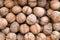 Stock Image : Walnuts