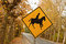 Stock Image : A warning sign on the road for horse riders