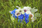 Stock Image : Wedding bouquet on the grass