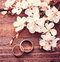 Stock Image : Wedding rings. Flowering branch flowers on wooden surface.