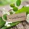 Stock Image : Wellness
