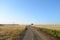 Stock Image : Wheat harvest