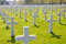 Stock Image : White Crosses of the World War II Normandy American Cemetery and Memorial