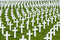 Stock Image : White marble crosses at an American military cimetery