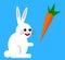 Stock Image : White rabbit