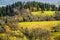 Stock Image : Wilderness autumn landscape