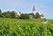 Stock Image : Wine Village