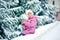 Stock Image : Winter fun