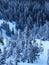 Stock Image : Winter landscape