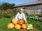Stock Image : Woman with a crop of pumpkins and squash